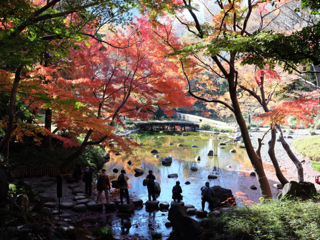 Vacker natur i Japan