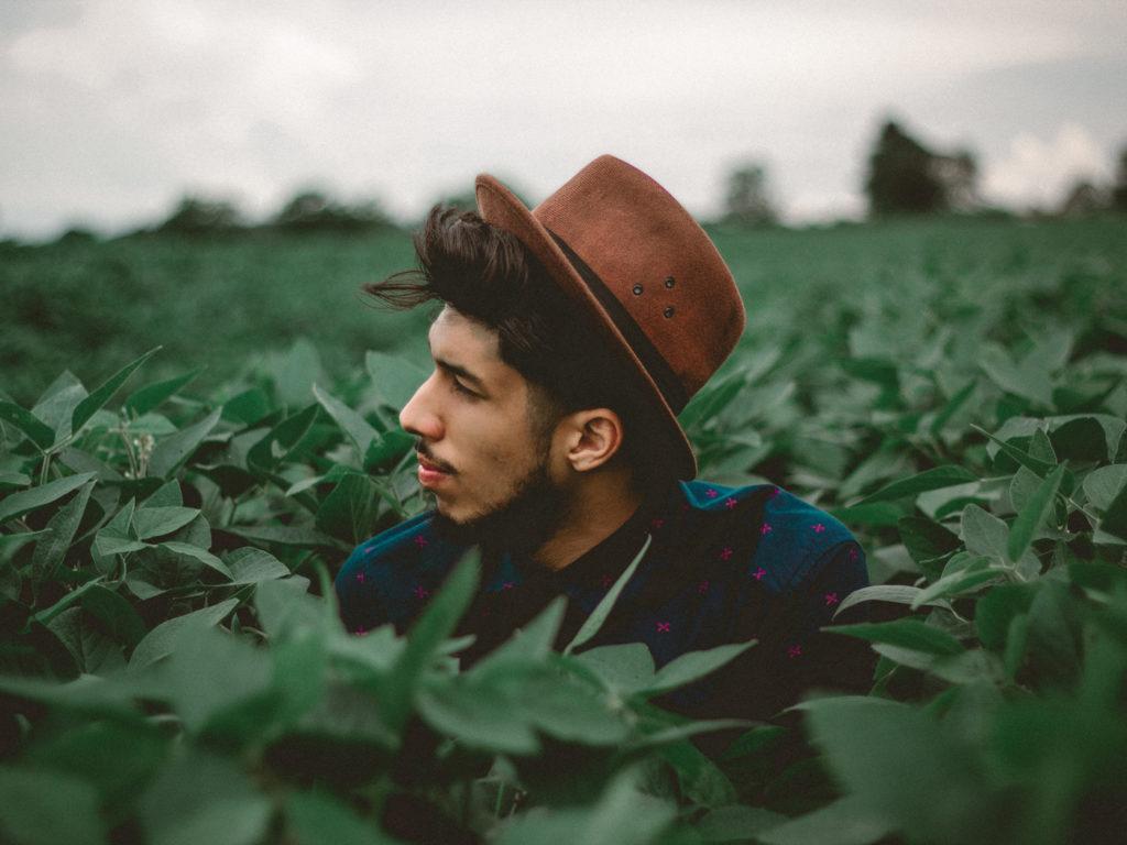 Man tittar upp från ett fält av gröna växter